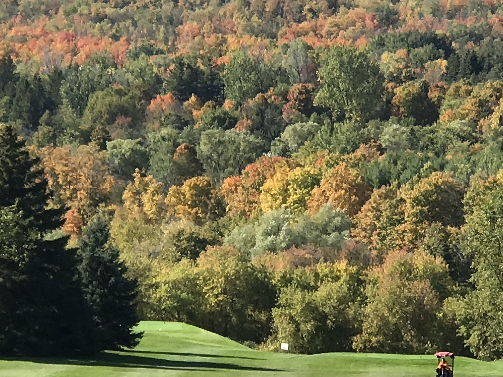 Splendid fall colours thru Caledon!